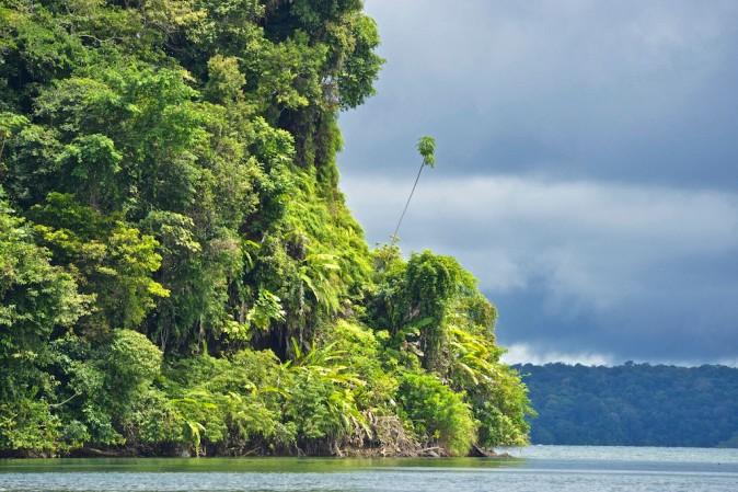 National Natural Park of Uramba,  Bahia Malaga, Colombian Pacific Coast. Photo © Kike Calvo