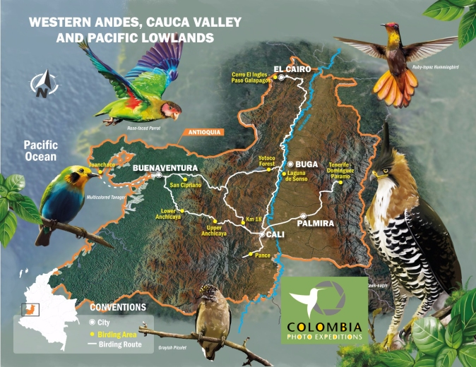 WESTERN ANDES, CAUCA VALLEY AND PACIFIC LOWLANDS